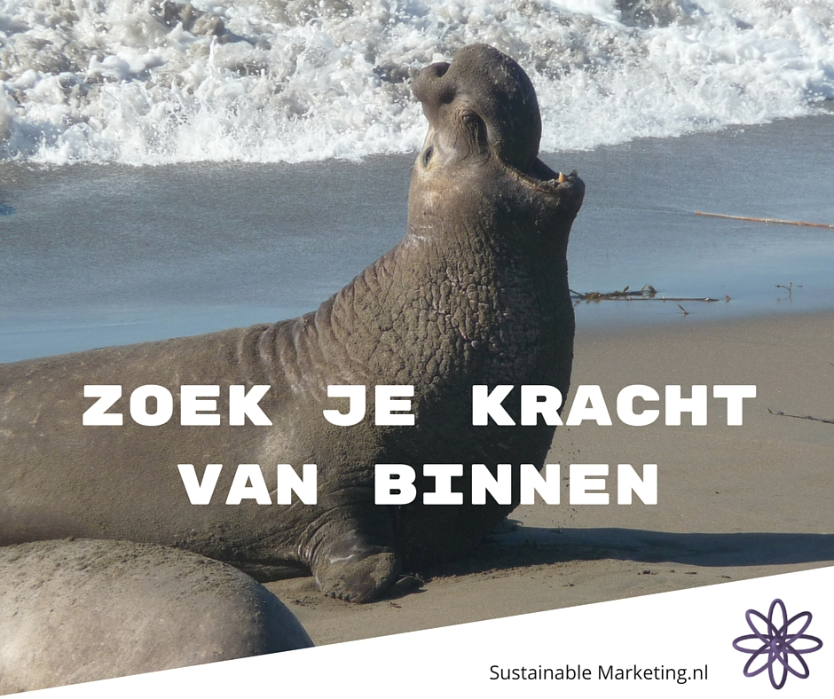 Sustainable Marketing Note 12; wat is jouw kracht?